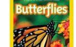 Butterflies & Seeds!