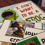 Recap of Frogs and Peek at my Moon Week!