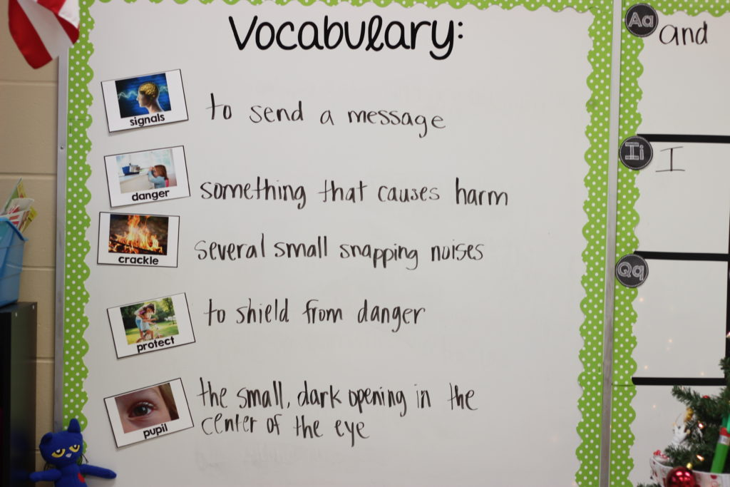 five senses in kindergarten