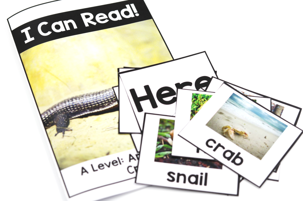 Nonfiction kindergarten books