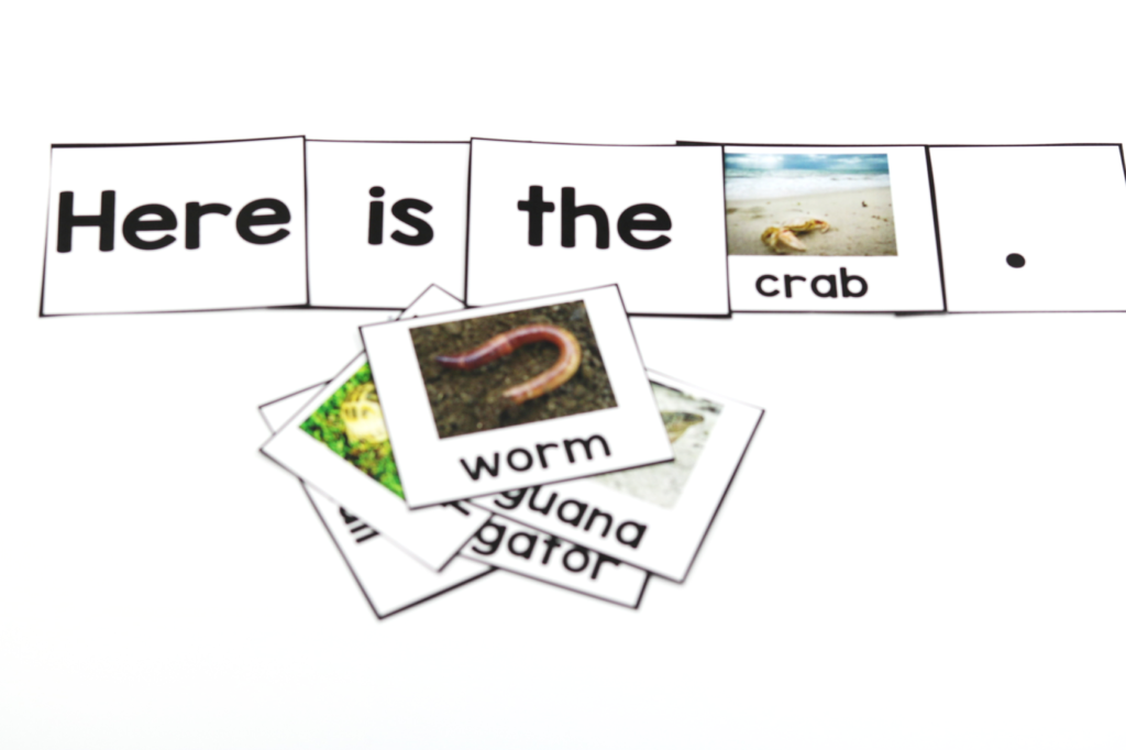 Nonfiction kindergarten books