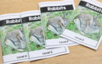 Differentiated Nonfiction Readers (Rabbit Reader Freebie Included)